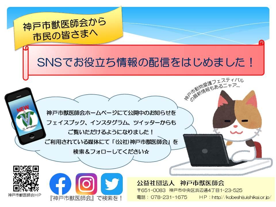 2019神戸市獣医師会SNS始めました